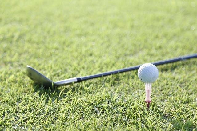 訪問によるトレーニングを世田谷で受けるなら【株式会社iforce】へ~健康や美容のために、ゴルフのための体力強化など目的別で指導~